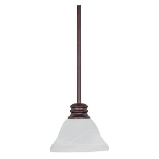Charlton Home Poneto 1-Light Cone Pendant
