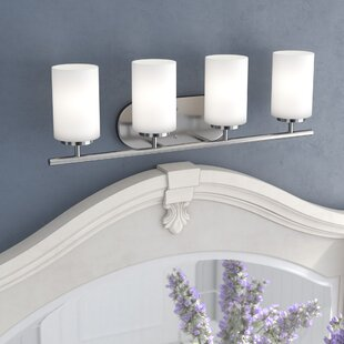 Gaskell 4-Light Vanity Light by Darby Home Co