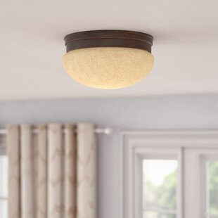 Andover Mills Brinkmann 2-Light Flush Mount