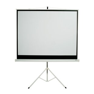 Matte White 100 inch  diagonal Portable Projection Screen
