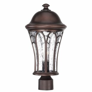 Fleur De Lis Living Berube Outdoor 1-Light Lantern Head