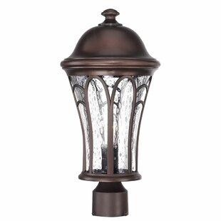 Fleur De Lis Living Berube Outdoor 1-Light Lantern Head
