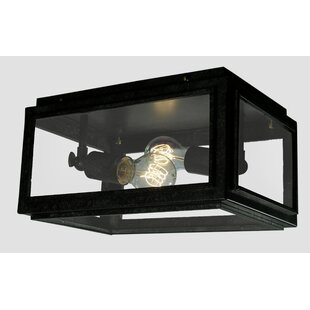 Ammerman 2-Light Flush Mount by Williston Forge