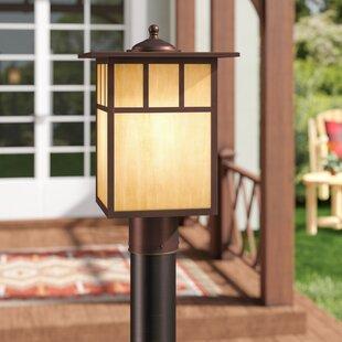 Loon Peak Joelle Outdoor 1-Light 150W Lantern Head