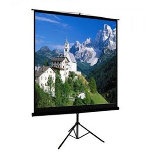 TygerClaw Black Portable Projection Screen