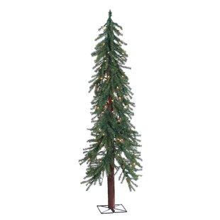 Sterling Inc. Christmas Trees You'll Love   Wayfair