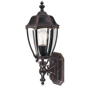 Teri 1-Light Outdoor Wall lantern
