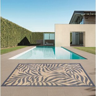 Butte Beige/Blue Indoor/Outdoor Area Rug