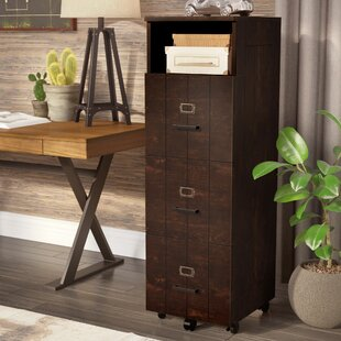 Kaj Industrial 3 Drawer Vertical Filing Cabinet by 17 Stories Purchase