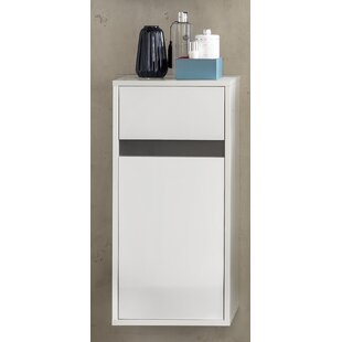 Tollison 35 X 73cm Wall Mounted Cabinet By Metro Lane