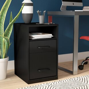 Rebrilliant Bourassa 2 Drawer Filing Cabinet
