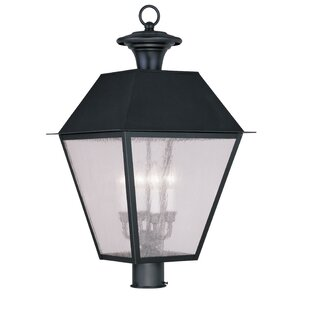 Cynda Outdoor 4-Light Lantern Head by Darby Home Co