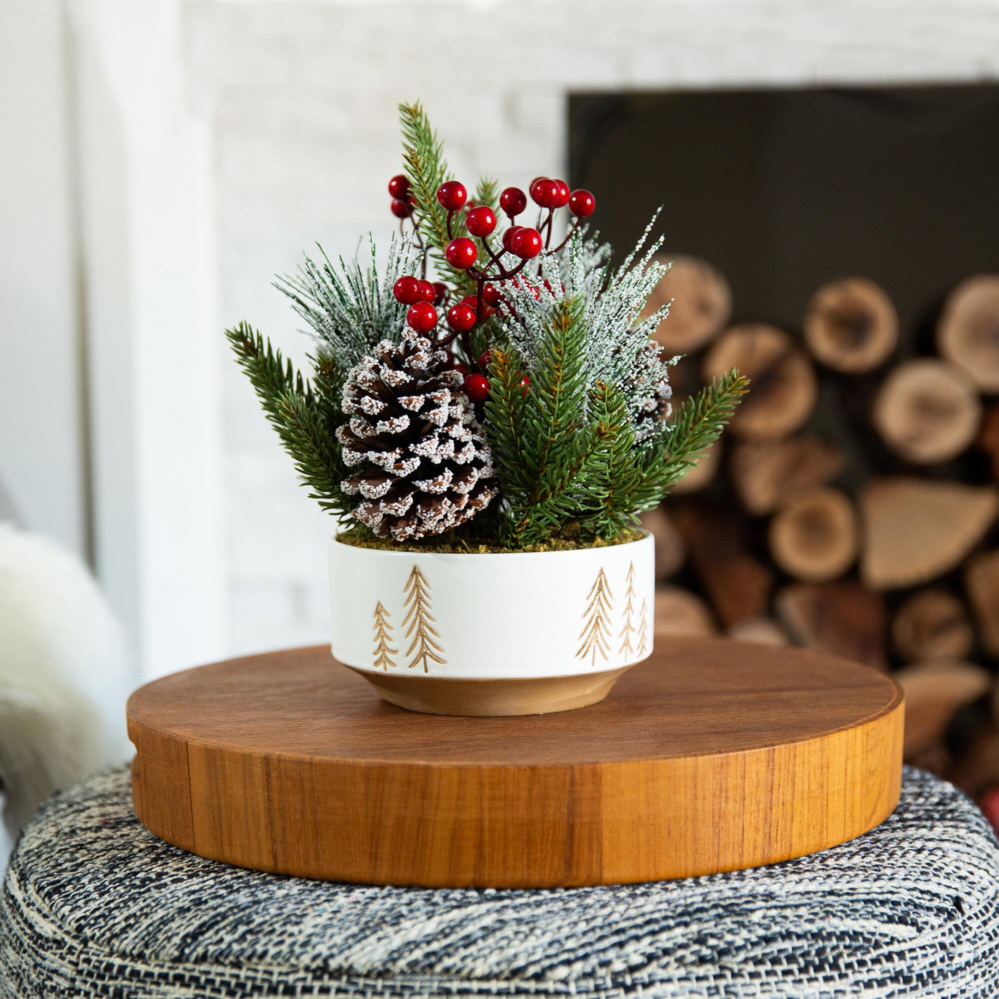 Xmas Mixed Floral Arrangement In Pot Reviews Birch Lane