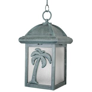 Penfield 1-Light Outdoor Hanging Lantern
