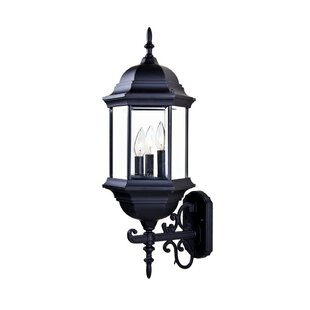 Pruitt 3-Light Outdoor Sconce