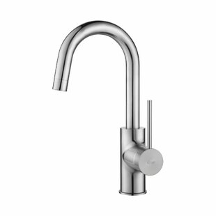 Langley Street Boomer Single Handle Kitchen Faucet