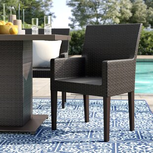 Tegan Patio Dining Chair (Set Of 2) by Sol 72 Outdoor Find