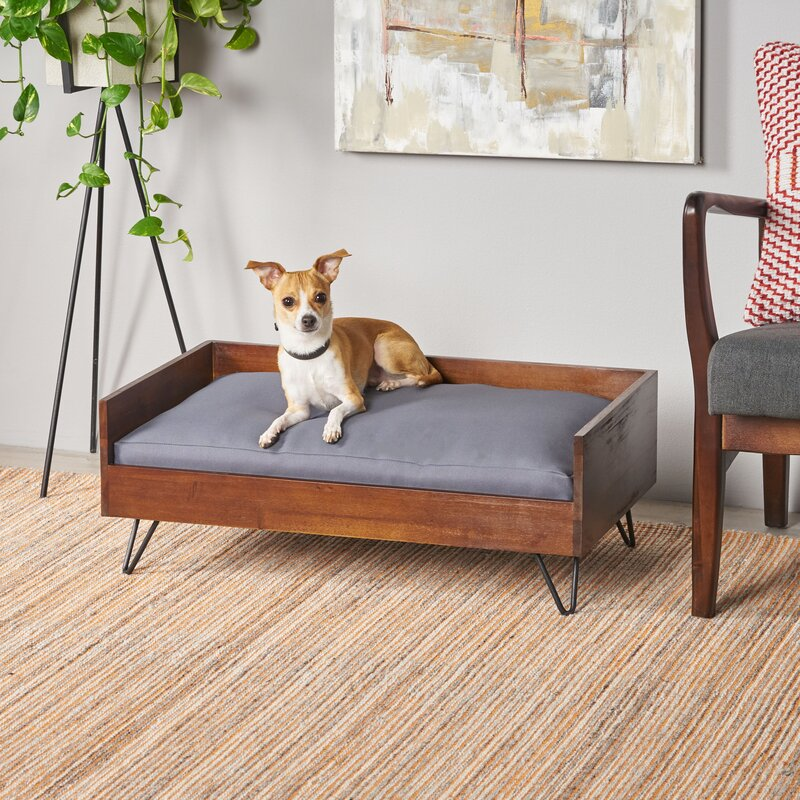 dog bed couch – yildizkurt.co