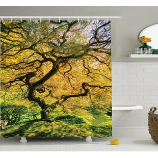Riddle Japanese Shadows of a Large Maple With River With Sunlight Fall Season Nature Theme Single Shower Curtain