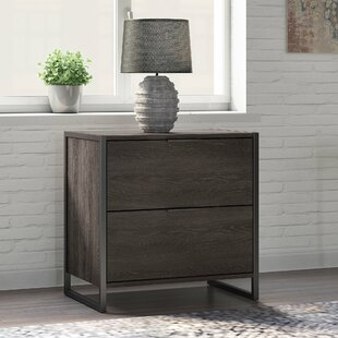 Quiroz 2 Drawer Lateral Filing Cabinet