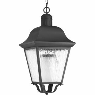 Best Choices Thornton 1-Light Hanging Lantern By Alcott Hill