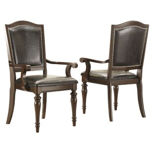 Hobart Arm Chair (Set of 2) by Darby Home..