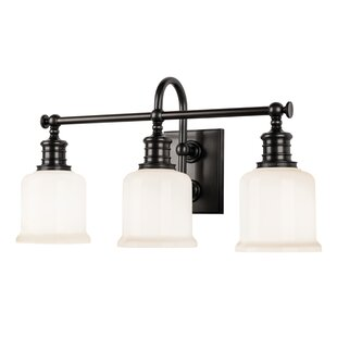 Beachcrest Home Mullings 3-Light Vanity Light