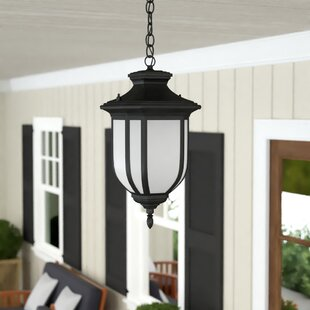 Teri 1-Light Outdoor Pendant
