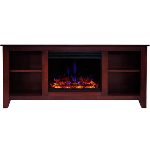 Inexpensive Santa Monica Electric TV Stand for TVs up to 60 with Fireplace by Alcott Hill Reviews (2019) & Buyer's Guide