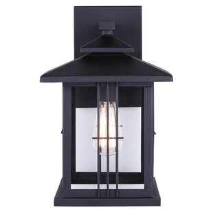 Alcott Hill McLean 1-Light Outdoor Wall Lantern