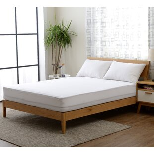 Greater Taree Knitted Fabric Hypoallergenic and Waterproof Mattress Cover ByAlwyn Home