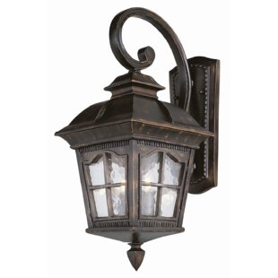 Read Reviews Freeborn 1-Light Outdoor Wall Lantern By Darby Home Co