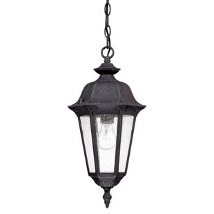 Shaw 1-Light Outdoor Hanging Lantern By Astoria Grand Outdoor Lighting