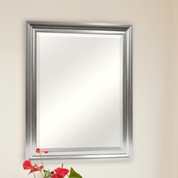 Rectangular Wall Mirror darby home co rectangle plastic beveled wall mirror & reviews