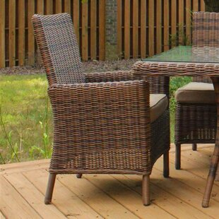 Bay Isle Home Soules Patio Dining Chair with Cushion
