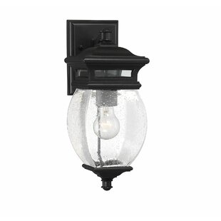 Savings Hultgren LED Outdoor Sconce By Alcott Hill