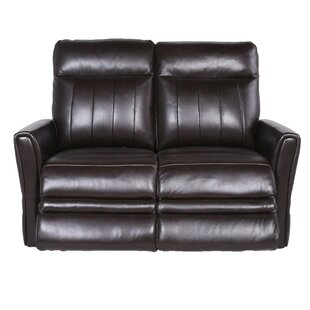 Shaun Reclining Loveseat