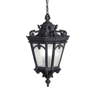 Fleur De Lis Living Guzzi 3-Light Outdoor Hanging Lantern