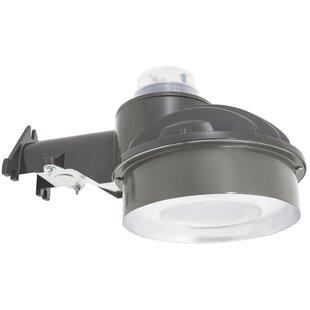 American Lighting LLC 1-Light Spot Light