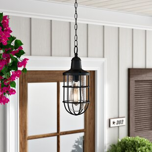 Gracie Oaks Linjia 1-Light Outdoor Hanging Lantern