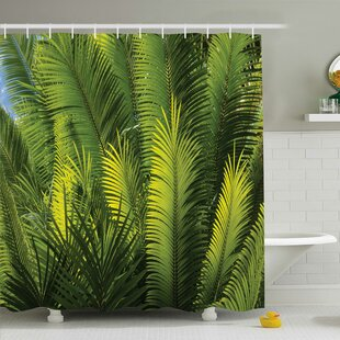 Inexpensive Palm Tree Foliage Tropical Plant Leaves Forest Exotic Natural Beauty Image Shower Curtain Set ByAmbesonne