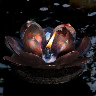 Pond Boss Floating torch