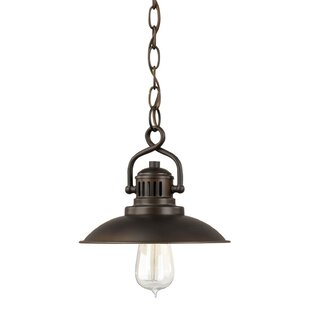 Trent Austin Design Meridian 1-Light Dome Pendant