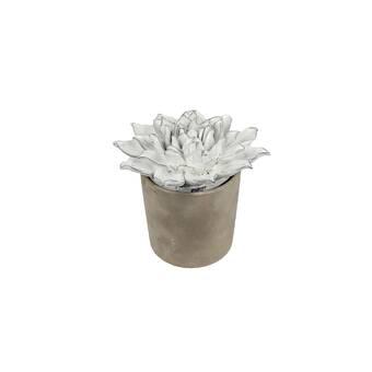 Bungalow Rose Chickerell Potion Handblown Recycled Glass Jar Wayfair