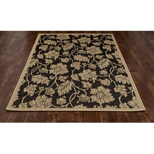 Beaminster Black/Beige Indoor/Outdoor Area Rug