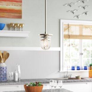 Mullin 1-Light Urn Pendant by Beachcrest Home