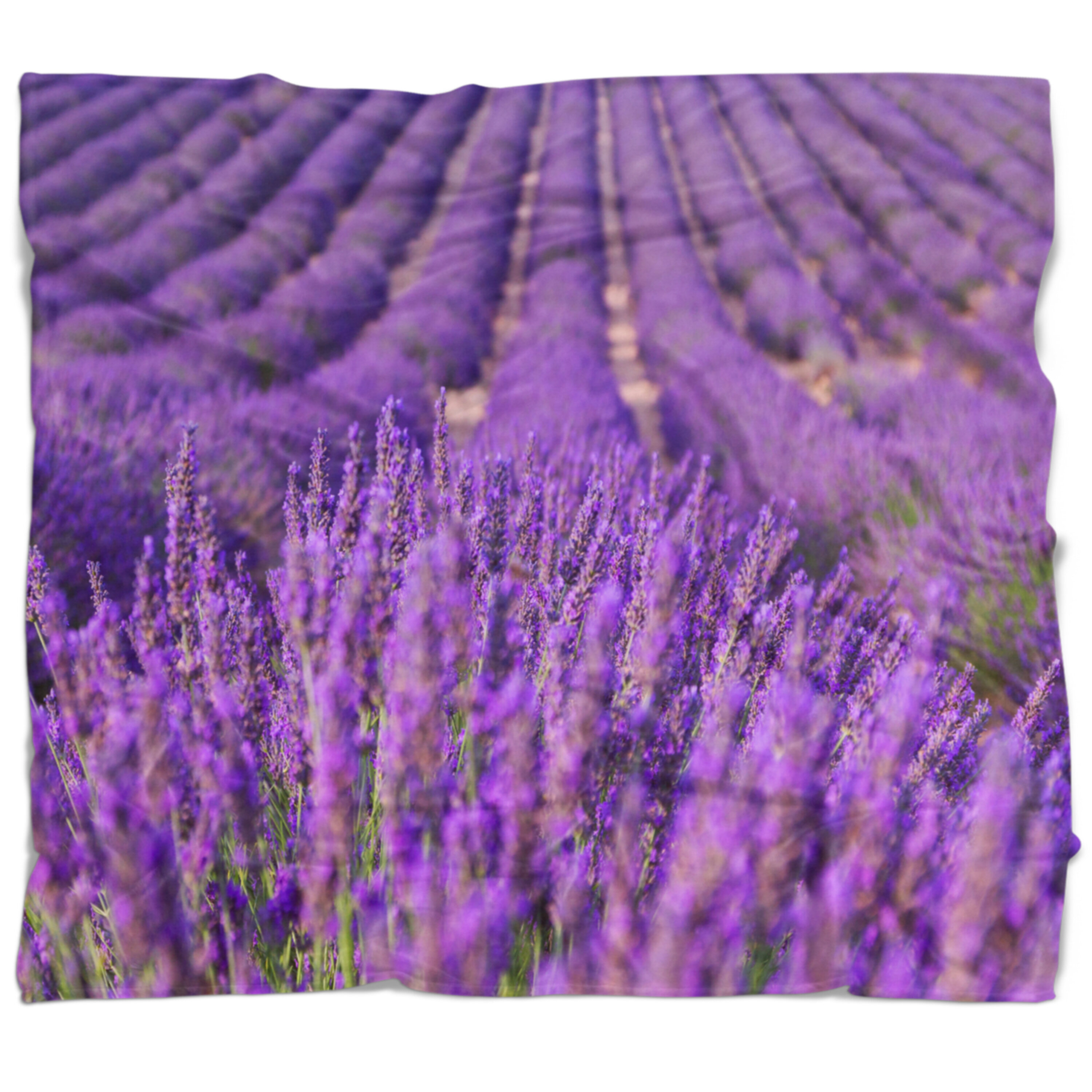 East Urban Home Floral Beautiful Fragrant Lavender Fields Blanket Wayfair