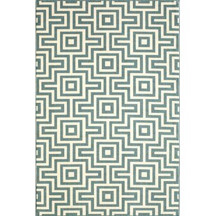 Rahul Blue Indoor/Outdoor Area Rug