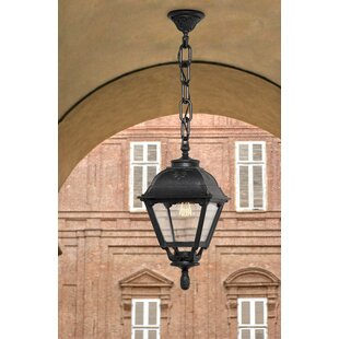 Review Andesine 1 Light Outdoor Hanging Lantern
