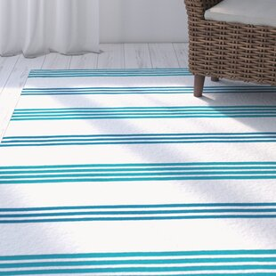 One-of-a-Kind Raelyn 27 x 48 Light Blue/Navy Blue/White Indoor/Outdoor Area Rug